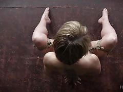 milf, blonde, big tits, domination, fetish, tied up, tits torture, nipple clamps, rope bondage, hard tied, dee williams