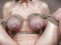 Dee huge melons get tortured