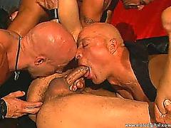 Leather daddies gang banging brad benton 01