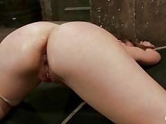 milf, bondage, bdsm, skinny, domination, dildo, rope, vibrator, moaning, punished, tied up, hot ass, anal insertion, sex toys, tight anus, shaved ass, vault, executor, remy lacroix, hogtied