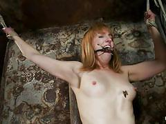 small tits, milf, blonde, bondage, bdsm, tied, punishment, skinny blonde, tit torture, ropes, laundry pliers, vault, executor, gag, weight, mallory mallone, hogtied, kinky dollars