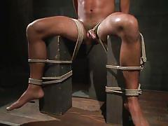 rope bondage, bdsm, blowjob, cock torture, ball gag, whipping, clothespins, electric wand, anal dildo, 30 minutes of torment, kink men, seth santoro
