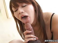 Asian babe sucking hard cock
