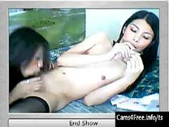 Two hot asian shemales suck cock on webcam
