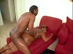 Busty ebony bbw ( bbw 18 sex )