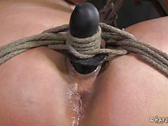 milf, bdsm, crying, brunette, tied up, ropes, bondage cage, hard tied, penny barber