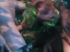Batman contro poison ivy