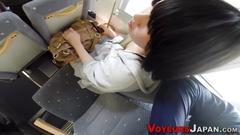 Japanese babe on train