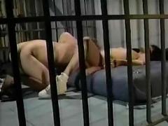 Raven in prison
