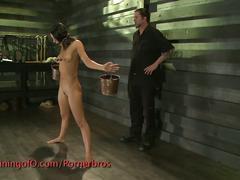 bdsm, toys, baseball bat, bondage, forced, painful, sadistic, slave, torture, vibrator, whip