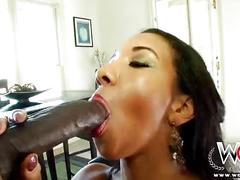 Wcpclub black beauty sophia fiore loves a big black cock