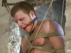 bondage, tatoo, gay bdsm, gays, tied up, gay handjob, gay blowjob, bald guy, muscled gay, ropes, ball gag, leo forte, brian bonds, bound gods, kinky dollars