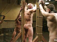 Bad boys locked in cage and punished