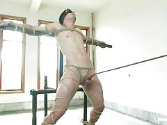 He's hard cock is tied and punished