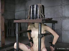 milf, bdsm, vibrator, bondage device, restraints, immobilized, infernal restraints, willow hayes