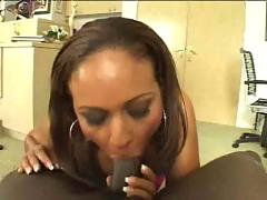black and ebony, blowjobs, cumshots