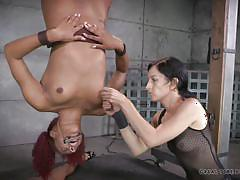 Naughty bitches tied and tortured