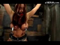 Busty girl tied legs and arms hanging getting her nipples tortured mouthgag pussy stimulated with vibrator and vacum by the master in the dungeon