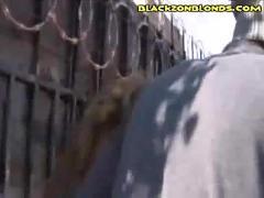 Blonde begs for black dick
