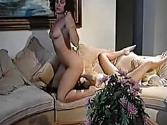 pornstars, lesbians, cunnilingus