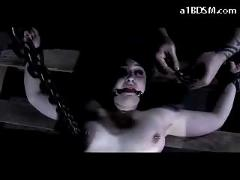 Girl tied with belts getting hooks to piercings pussy stimulated with vibrator in the dungeon