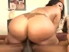 Fat ebony ass pounded