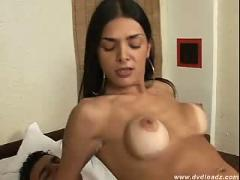Shemales are awesome  shemale tranny ts transexual