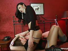 Brunette shemale having fun with brunette chick