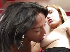 blonde, blowjob, pussy lips, nice ass, shaved pussy, black panties, round boobs, shaved cock, brunette shemale, michelly cinturinha, shirley, tranny dicks in chicks, pimproll