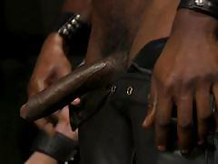 Interracial sex with kinky tortures