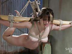 sadism, bdsm, babe, hanging, rope, tied up, pussy fingering, sadistic rope, kink, katt anomia