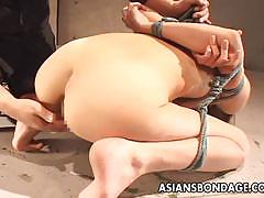 Bound asian gets her pussy fingered