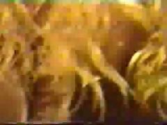 Suruba carioca brasilian natural sex