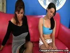 Cougars crave kittens 1