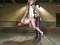 Where will the slave gets shocked next?