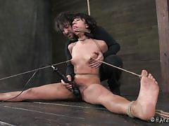 small tits, milf, bdsm, vibrator, brunette, tied up, hairy pussy, tits torture, ropes, clothespins, hard tied, vivi marie