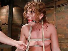 milf, bdsm, hanging, vibrator, tied up, brown hair, ropes, vault, stick with dildo, hogtied, kink, savannah fox