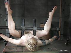 milf, tattoo, bondage, bdsm, shocking, brown hair, mouth gagged, restraints, infernal restraints, jeze belle