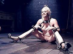 Collared and tortured