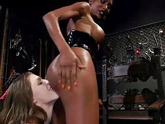 Busty ebony tranny gets her ass fingered and licked
