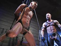 Cesar xes gets brutally punished and humiliated