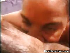 Gay black studs in their hot ass licking action.