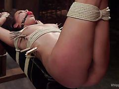 Dominating lesbian love with ropes, clips and torturing