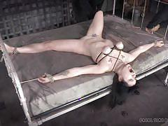milf, tattoo, bdsm, pissing, brunette, bucket, tied on bed, bondage cage, squeezed boobs, real time bondage, siouxsie q