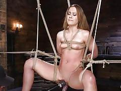 bdsm, babe, dildo, suspended, brown hair, rope bondage, electric vibrator, hogtied, kink, cheyenne jewel, the pope