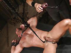 bdsm, blowjob, tied up, collar, gay, hot wax, anal hook, 30 minutes of torment, kink men, diego vena