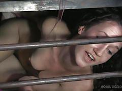 milf, bdsm, spanking, redhead, tied up, bondage cage, rope bondage, real time bondage, ashley lane