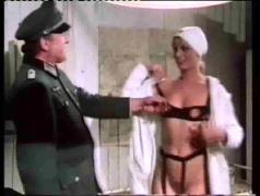 group sex, pornstars, vintage