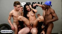 gangbang, big tits, shemale