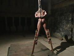 bdsm, hanging, whipping, gays, tied up, basement, hunk, ropes, 30 minutes of torment, kink men, brock avery